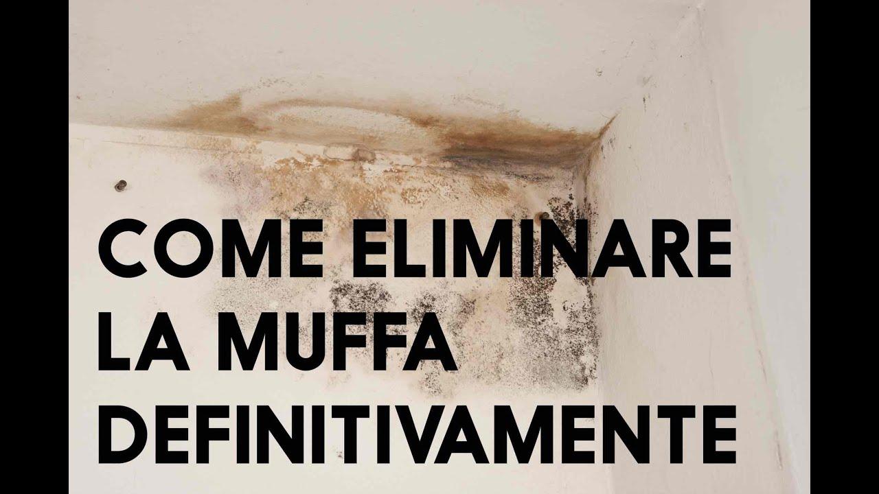 COME ELIMINARE LA MUFFA DEFINITIVAMENTE - YouTube