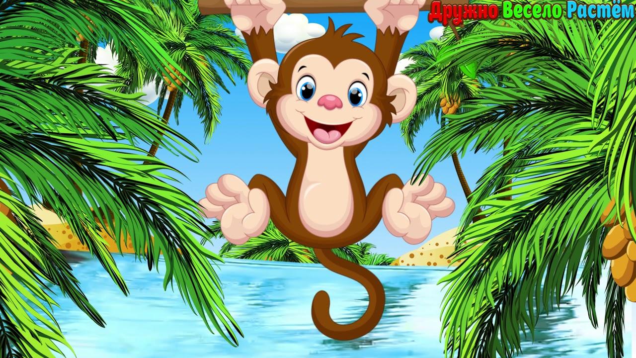 Картинка обезьяна мультик