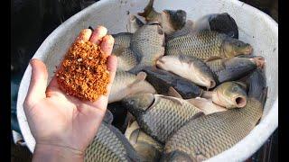 Хотите чтобы рыба всегда ловилась по крупному Сделайте это