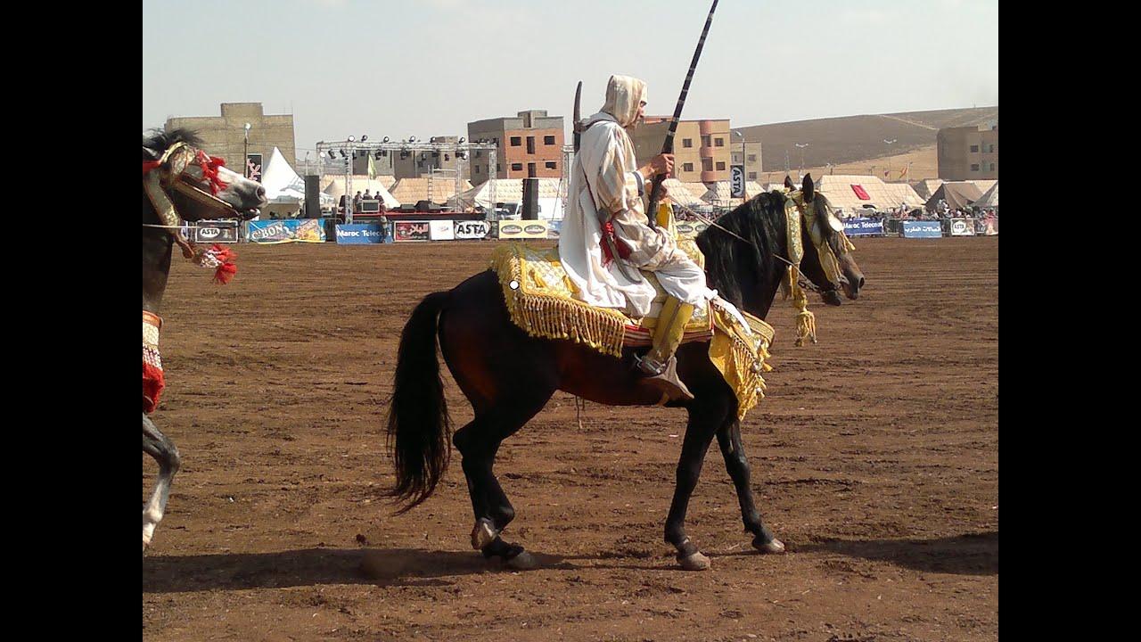 cheval arabe tbourida