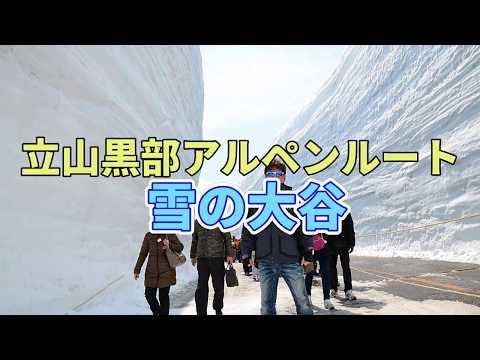立山黒部アルペンルート [ 雪の大谷 ] ~Tateyama Kurobe Alpine Route~