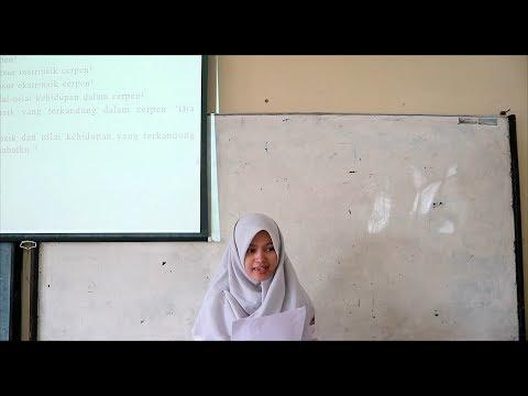 Video Pengajaran Sastra SMA - Nilai Cerpen