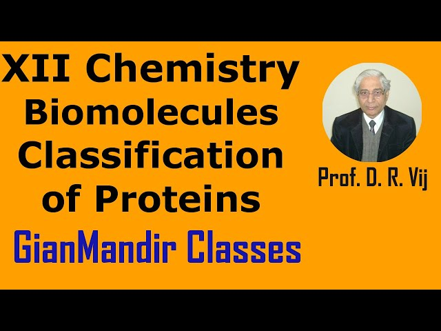 XII Chemistry | Biomolecules | Classification of Proteins by Gourav Sir