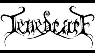 Tenebrare   Stalking What Shall Be Ours Again  Video