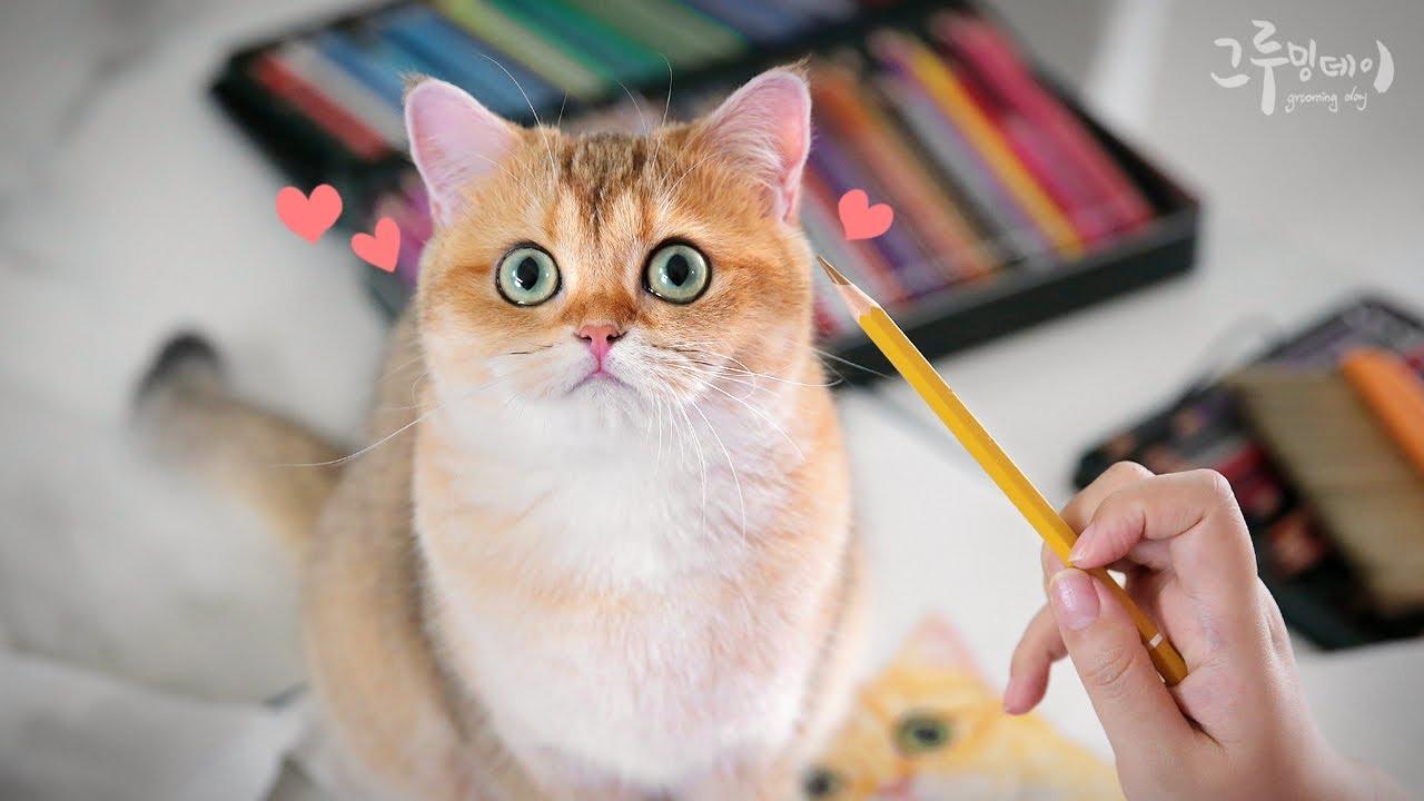 고양이에게 초상화를 선물했어요