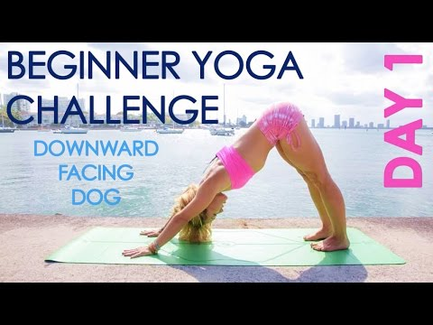 one month beginner yoga challenge  youtube