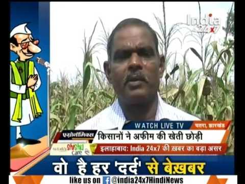 Reports on the profitable farming in Chatra of Jharkhand