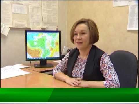 пелымское телевидение видео это одновременно