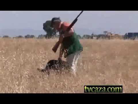 37-3-curso-de-tiro-de-caza,-el-ojo-director_chunk_1.flv