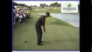 Download Tiger Woods 2000 Golf Swing Normal Speed & Frame-by-frame Mp3 and Videos