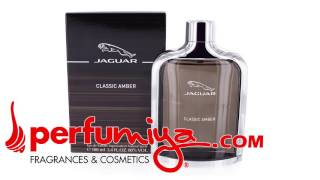 Jaguar Classic Amber cologne for men by Jaguar from Perfumiya