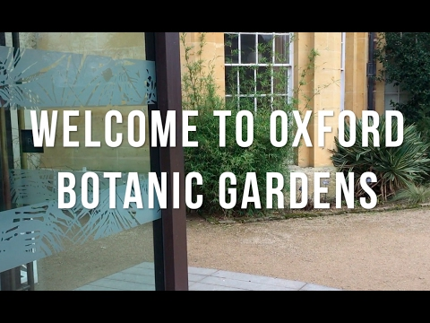 Tour of Oxford Botanic Gardens