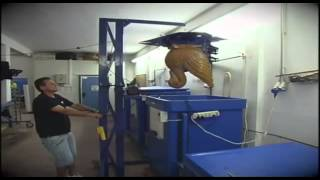 Manufacturing Business Idea - Produce Ice Sculptures