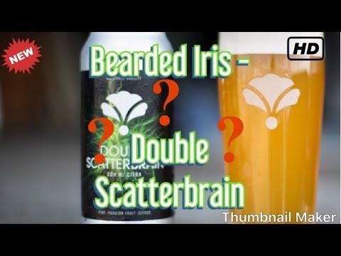 "Beer Review - Bearded Iris ""Double Scatterbrain"" DIPA"