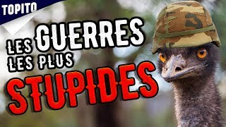 Top 8 most stupid war stories