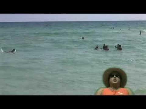 JoeMammy's Destin Jellyfish Report - 8/10/08