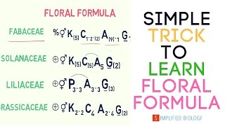 Floral Formula for NEET, AIIMS, AIPMT, JIPMER