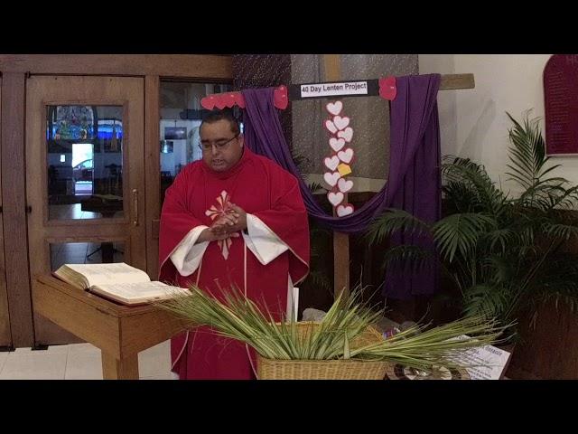 Palm Sunday Information