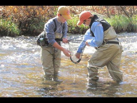 Fall Fly Fishing Wilson Creek North Carolina