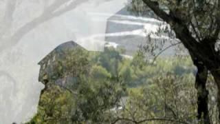 Proljeća Doboja - Ljubo Tomić