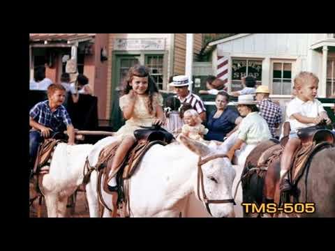 Youtube Rainbow Ridge Pack Mules