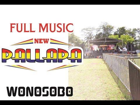 Jihan Audy - Banyu langit New Pallapa live Wonosobo