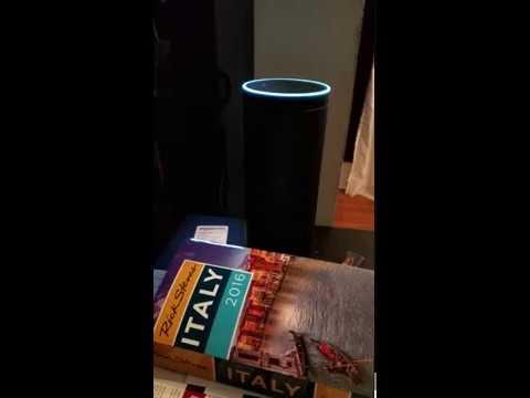 The best Amazon Echo Alexa easter eggs