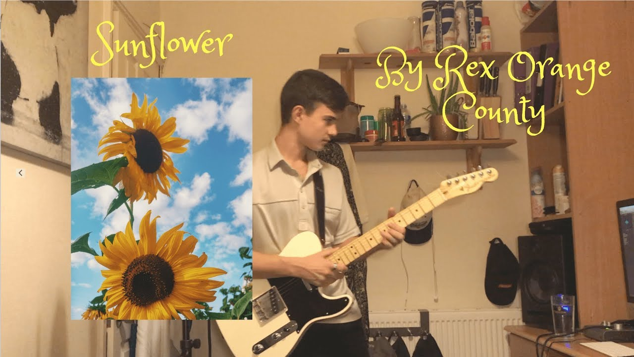 Rex Orange County Sunflower Cover By Eugene Algar