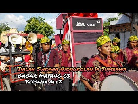 Inilah Suasana Nyongkolan Di Sumbawa _ Gagar Mayang 03 Vs Ale2 || Adat Sasak