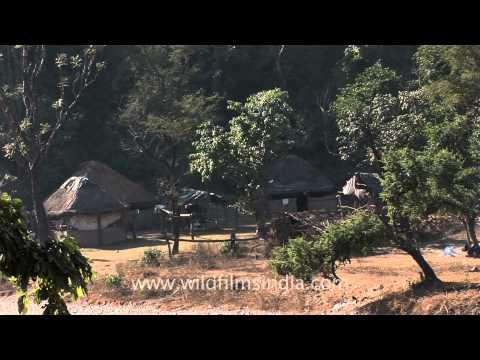 Gujjar dera inside Rajaji National Park near the foothills of Himalayas