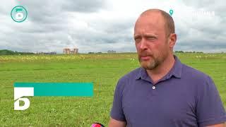 видео Вырубка деревьев в Рузском районе Московской области