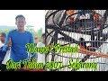 Inilah Aksi Murai Batu Borneo Mr Bones Prestasi Dari Tahun  Sampai Sekarang  Mp3 - Mp4 Download
