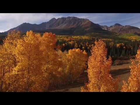 Telluride Gold Season