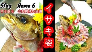 【Stay Home】お手軽な値段の魚をさばく 390円のイサキ