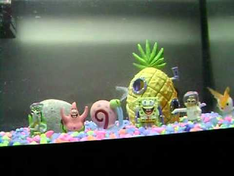 Spongebob fish tank spongebob and patrick house party for Fish tank house
