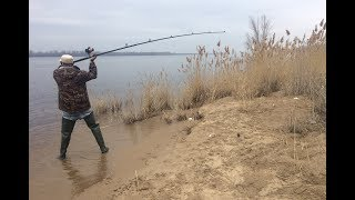 #2  Весенняя Рыбалка на Пляже. Ловля на Донку - Закидушку