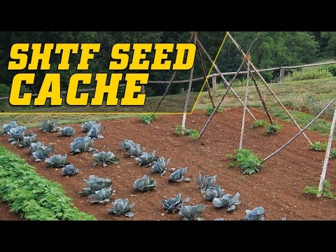 Survival Seed Cache - Heirloom Non-GMO - 32,000 Seeds - $24.99