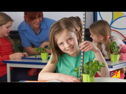Pedagogia de Projetos na Educação Infantil - Curso Educação Ambiental Infantil