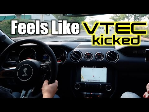 2018 Shelby GT350 first drive - APX Boston A Car Guy Vacation