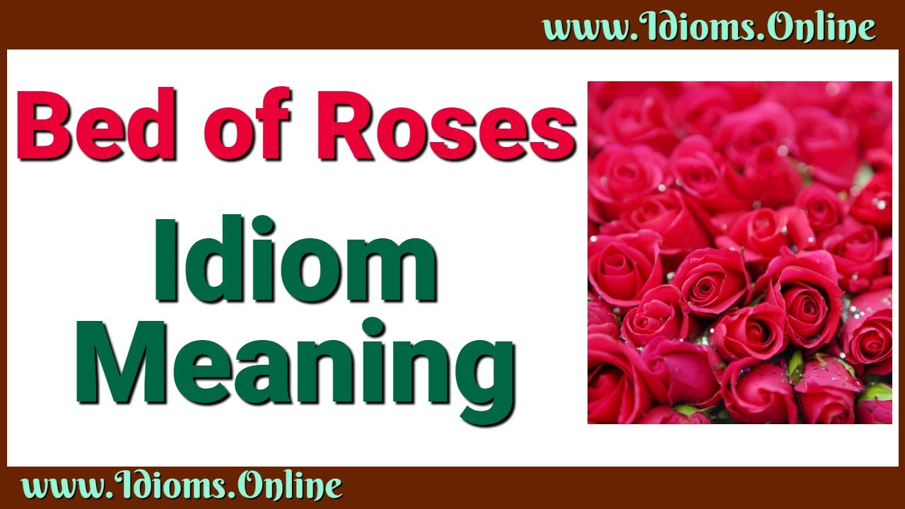 Bed Of Roses | Idioms Online