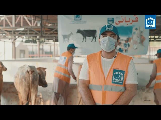 الخدمت قربانی فی سبیل اللہ کے تحت جانوروں کی خریداری اور دیکھ بھال کے حوالے سےخصوصی ویڈیو رپورٹ