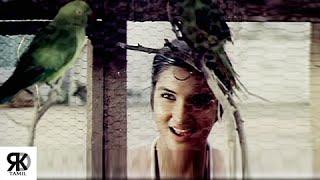 Chinna Kili Vanna Kili Song | Vijaykanth, Sukanya | Chinna Gounder