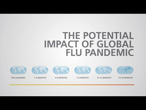 The Potential Impact of Global Flu Pandemic
