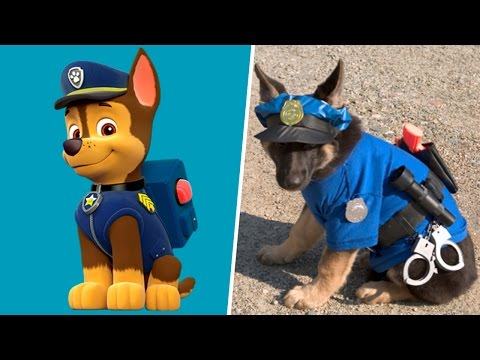 Thumbnail: Paw Patrol Dogs in Real Life! All Characters