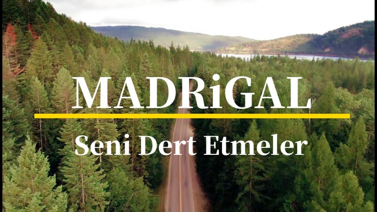 madrigal - seni dert etmeler (cover)