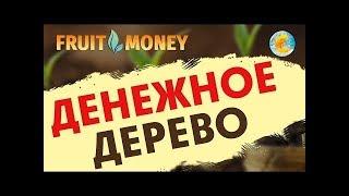 For Life Pro Ru : Лучший Заработок Bitcoin - Заработок На Автомате - FOR-LIFE-Bitcoin