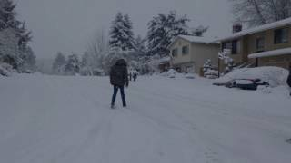Portland Snow Day - January 11, 2017