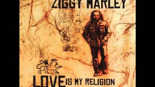 "Ziggy Marley - ""Black Cat"" 