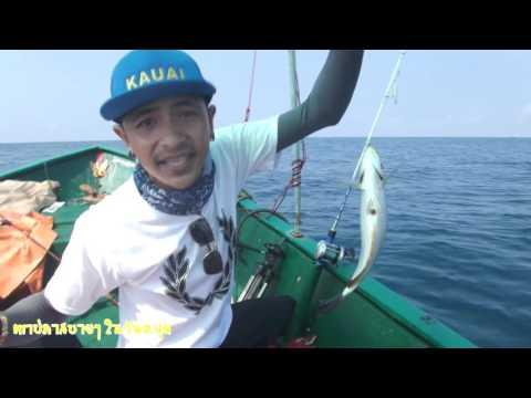 ตกปลาสบายๆวันหยุด Ep25 ตอน ตกปลาทะเลแสมสาร กับไต๋เต่า มันโครต โคตร