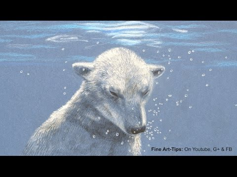 How to Draw a Polar Bear Under Water, With Color Pencils - Drawing Bubbles